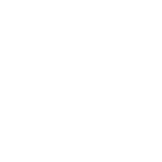 icon_standardsofcare